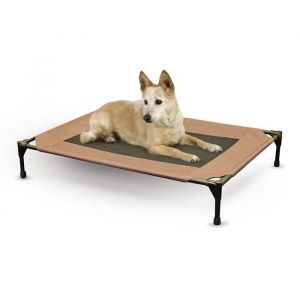 Pet Cot (Size: large)