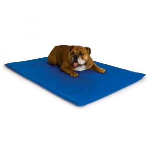 Cool Bed III Thermoregulating Pet Bed (Color: Blue, Size: medium)